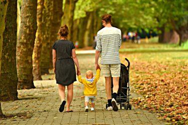 Persone, Famiglia consumatori